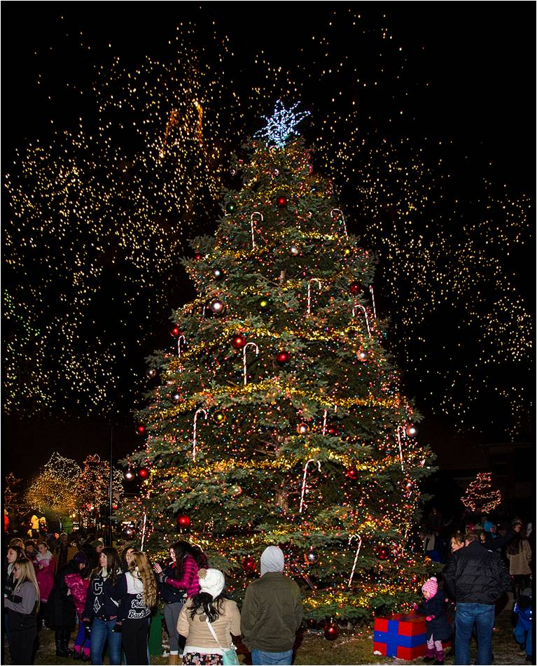 Christmas Runway Lights.Holiday Tree Lighting Elk Grove Village