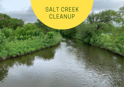 Volunteers Needed for Salt Creek Cleanup